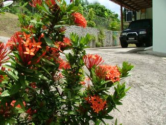 Gallery Image No. 2 for BRI 014 Rodney Heights, St Lucia